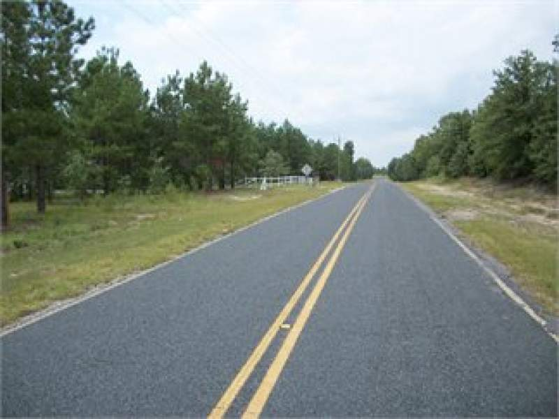 Bishopville, Lee County, South Carolina Land For Sale - 4.2 Acres Image