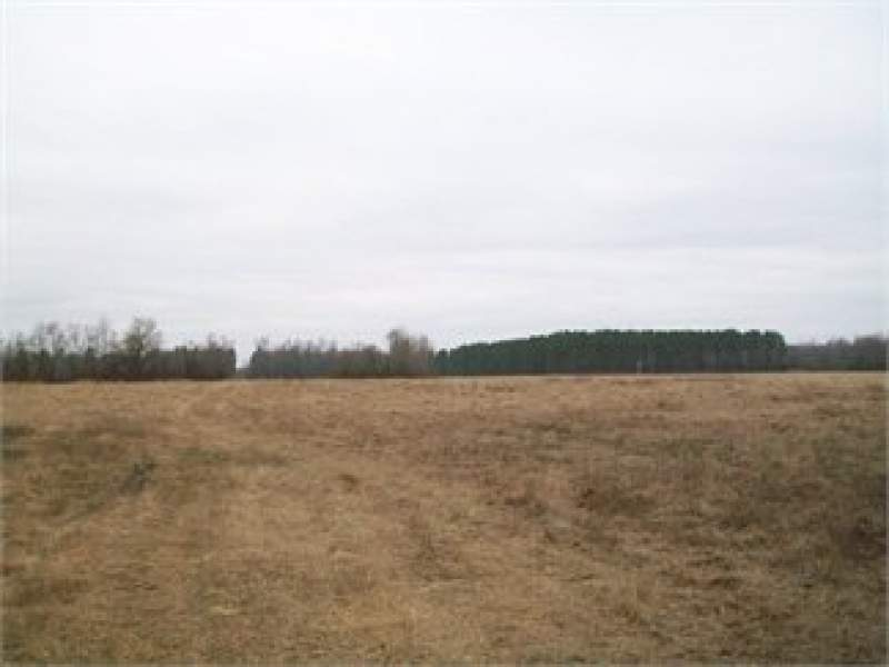 Sumter, Sumter County, South Carolina Land For Sale - 23 Acres Image